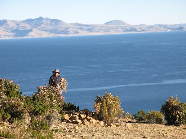 Lige inden solen går ned kommer landsbyens indbyggere tilbage til landsbyen fra deres mange gøremål bl.a. med at dyrke markerne eller vogte fårene. Billedet her er fra Isla del Sol.
